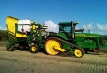 Maalacan Double Row Sugar Cane Billet Planter